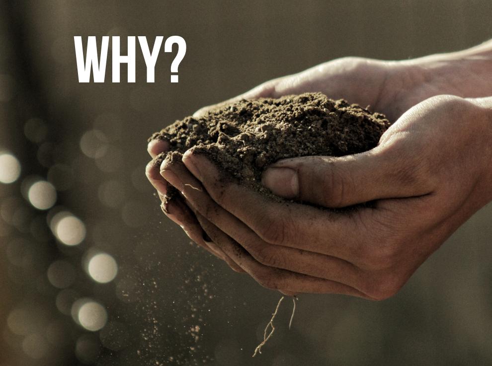food-merk-positionering-why-purpose